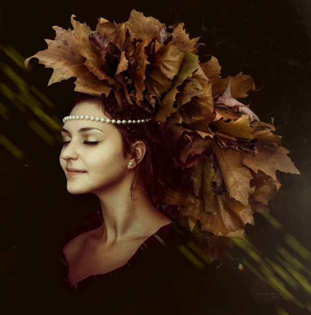 autumn-1773794_960_720