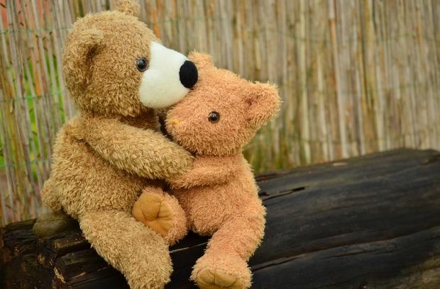 teddy-1113160_960_720